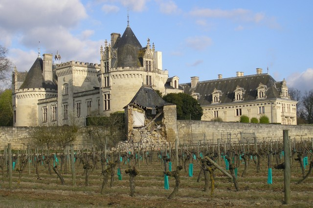 Wine estate in val de loire