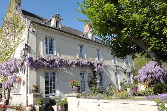 Our guest house decorated with wisteria in bloom in Indre and Loire